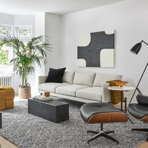 Living Room Design and Build